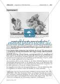 Gruppenpuzzle: Wirklichkeiten im Fokus: Sigmund Freud, Dada und Surrealismus Preview 5
