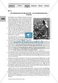 Simulation einer WTO-Ministerkonferenz: Konfliktfeld Baumwollhandel. Arbeitsmaterial mit Erläuterungen Preview 2