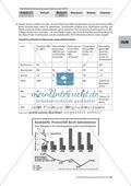 Simulation einer WTO-Ministerkonferenz: Konfliktfeld Baumwollhandel. Arbeitsmaterial mit Erläuterungen Preview 3