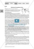 Simulation einer WTO-Ministerkonferenz: Konfliktfeld Baumwollhandel. Arbeitsmaterial mit Erläuterungen Preview 8