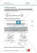 Abituraufgaben Baden-Württemberg 2013-III: Erschließen neurobiologischer Vorgänge an einer Synapse am Beispiel Lernen und Alzheimer.Mit Arbeitsmaterial und Lösungen. Preview 1