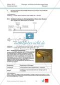 Abituraufgaben Niedersachsen 2012eA-I:Erschließen von stoffwechselbiologischen, evolutionsbiologischen, ökologischen und neurobiologischen Aspekten ausgewählter Wüstenorganismen.Mit Arbeitsmaterial und Lösungen. Preview 5