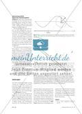 Schwingungen und Wellen mithilfe der Zeigerdarstellung verstehen - Einführung in die Zeigerdarstellung mit dynamischer Geometriesoftware Preview 3