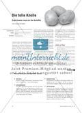 Die tolle Knolle -  Experimente rund um die Kartoffel Preview 1