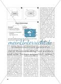 Integration durch Binnendifferenzierung - Eine Unterrichtssequenz aus Ciceros Pro Marcello Preview 2