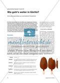 Wie geht's weiter in Görlitz? - Schrumpfungsprozesse aus verschiedenen Perspektiven Preview 1