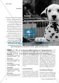 Ecoutez! - Standardorientierte Schulung und Überprüfung des Hörverstehens Preview 1