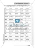 Fremdwörter richtig schreiben und verstehen: Arbeitsmaterial mit Erläuterungen Preview 2