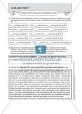 Groß- und Kleinschreibung: Arbeitsmaterial mit Lösungen Preview 4