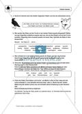 Fabeln deuten: Einführung mit Übungen und Lösungen Preview 2
