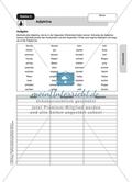 Wortarten: Adjektive. Arbeitsmaterial mit Lösungen Preview 1