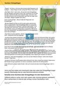 Originelle Schreibanlässe für den Sommer: Materialien für das Planen und Schreiben von Texten Preview 8