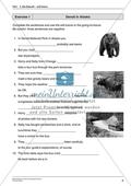 Will-Future: Erklärungen zur Bildung und Verwendung + Übungen + Lösungen Preview 2