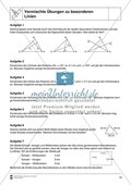 Aufgaben mit Lösungen rund um besondere Linien in Dreiecken als Grundlage für die ebene Geometrie. Preview 5