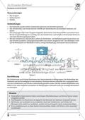 Vertretungsstunde Sport an Stationen: 4er und 5er Pyramiden bauen. Mit didaktischen Erläuterungen. Preview 3