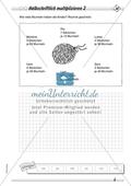 Differenziertes Übungsmaterial zum Multiplizieren - halbschriftliches Rechnen. Preview 2