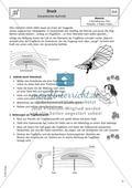 Dynamischer Auftrieb - Arbeitsblatt zum Auftrieb bei Fluggeräten Preview 1