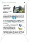 Kreativ rund um den Weidenbaum: Collagen Preview 1