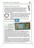 Kreativ rund um den Weidenbaum: Kreativideen Preview 3