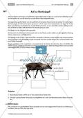 Das Leben als Jäger in der Altsteinzeit: Jagen in der Altsteinzeit Preview 2