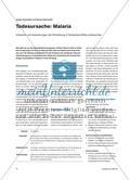 Todesursache: Malaria - Ursachen und Auswirkungen der Erkrankung in Subsahara-Afrika untersuchen Preview 1