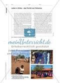 Die Arbeit der Anderen – Solidarität im afrikanischen Kontext - Schülerinnen und Schüler lehren und lernen im wechselseitigen Austausch Preview 6