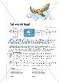 Frei wie ein Vogel - Ein Lied über den Traum vom Fliegen Preview 4