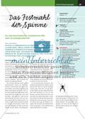 Das Festmahl der Spinne - Ein impressionistisches musikalisches Märchen im Anfangsunterricht Preview 1
