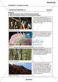 Landschaftswandel - Zuordnung von Bildern und Texten Preview 4