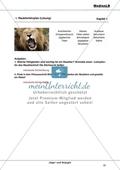 Raubtierlehrplan - Fähigkeiten von Raubtieren identifizieren Preview 2