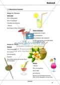 Alkohol - Risiken der Alltagsdroge: Rezepte für alkoholfreie Cocktails Preview 1
