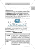 Biologie_neu, Sekundarstufe II, Genetik, Chromosomen und DNA, Mutation und Modifikation