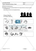 Lernzielkontrolle - Texte schreiben: Vorgangsbeschreibung - Rezept Preview 3