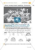 Abtauchen und staunen – Ein Korallenriff häkeln Preview 15