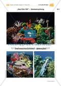 Abtauchen und staunen – Ein Korallenriff häkeln Preview 9