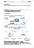 Ein Schaubild interpretieren: Aufbau und Sprache analysieren Preview 8