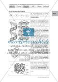Selbstlerneinheit - Die Nährstoffklassen Kohlenhydrate, Lipide und Proteine Preview 21