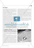 Nano im Unterricht? - Neue Themen für die Sekundarstufe I durch die Integration moderner Technologien in den Physikunterricht Preview 2