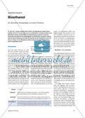 Bioethanol - Ein alternativer Energieträger und seine Probleme Preview 1