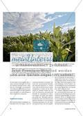 Bioethanol - Ein alternativer Energieträger und seine Probleme Preview 2
