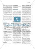 Bioethanol - Ein alternativer Energieträger und seine Probleme Preview 3