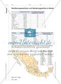 Mexico City – ein Monstrum? - Von der nationalen Industriemetropole zur Global City Preview 7