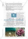 Die Korallenküsten der Tropen sind in Gefahr - Drohende Gefahr irreversibler ökologischer Schäden Preview 6