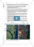 Gefährdung und Zerstörung von Küstenlandschaften - Satellitenbildgestützte Analyse am Beispiel des Tsunamis von Japan Preview 5