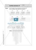 Selbstkontrollaufgaben - Zahlen und Operationen Preview 11