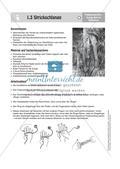Gestalten mit Stoff und Wolle: Spielzeug Preview 15