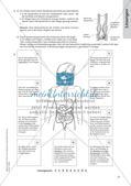 Gesunde Ernährung: Allgemeines zum Einstieg Preview 23