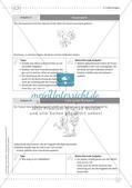 Fermi-Aufgaben - Gleichungen Preview 17