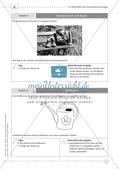Fermi-Aufgaben - Ähnlichkeiten und Dreiecksberechnungen Preview 13