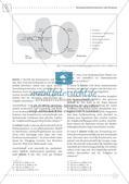 Fermi-Aufgaben - Ähnlichkeiten und Dreiecksberechnungen Preview 6